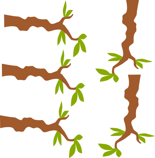 picture royalty free stock Branch Clipart jungle tree branch