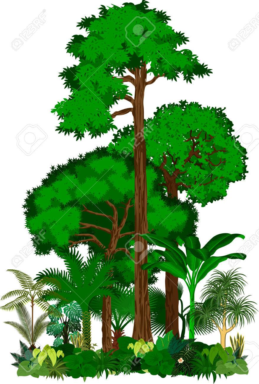 graphic royalty free library Jungle trees clipart. X making the web