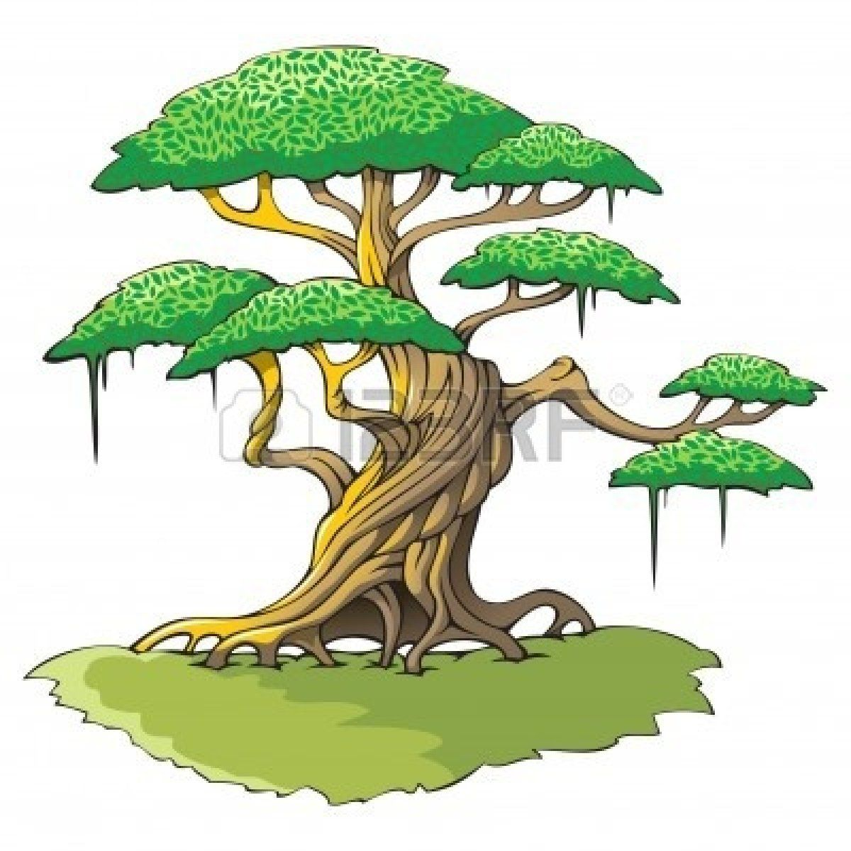 png library stock Tree cutout crooked photography. Jungle trees clipart