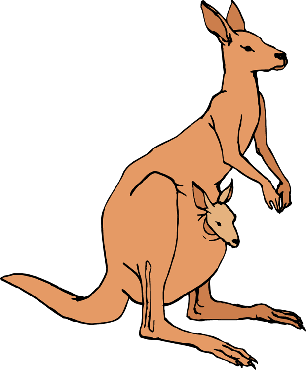 jpg download Kangaroo clipart. Principal