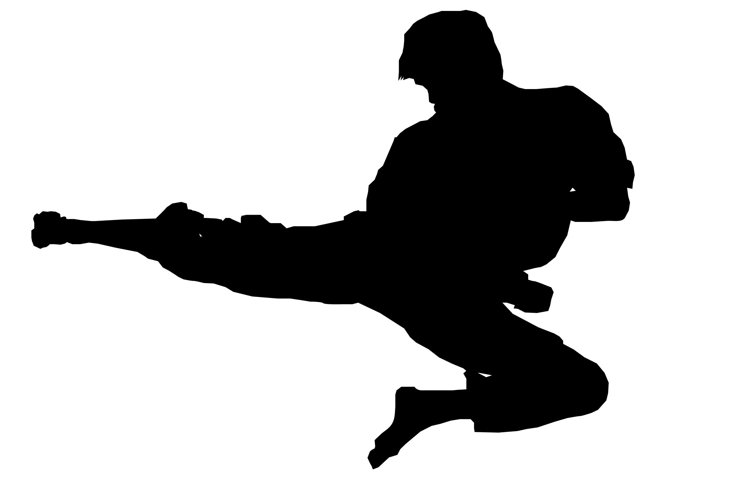png library library Silhouette clip art demonstration. Karate kick clipart.