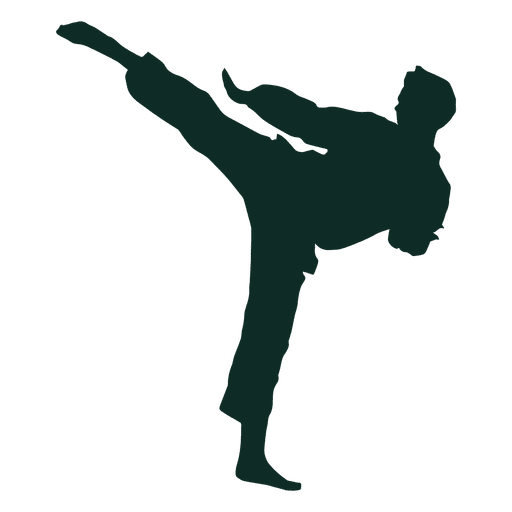clip art free library Karate vector. High kick training transparent