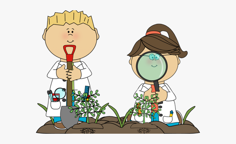image free Kids plants clipart. Word biology science free