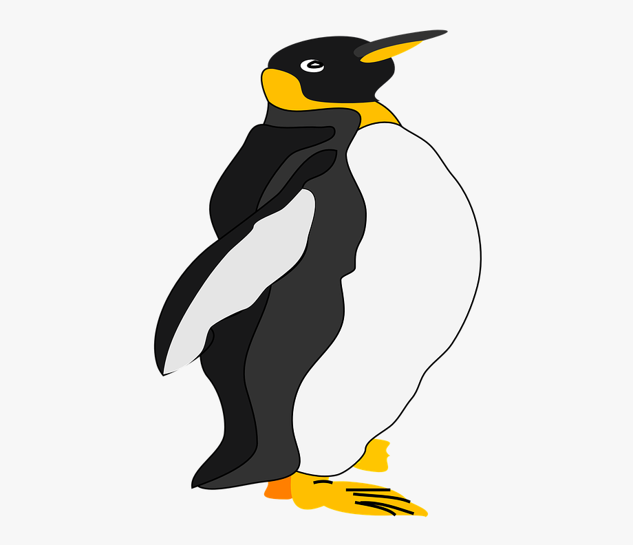 clipart freeuse Free cliparts on clipartwiki. King penguin clipart