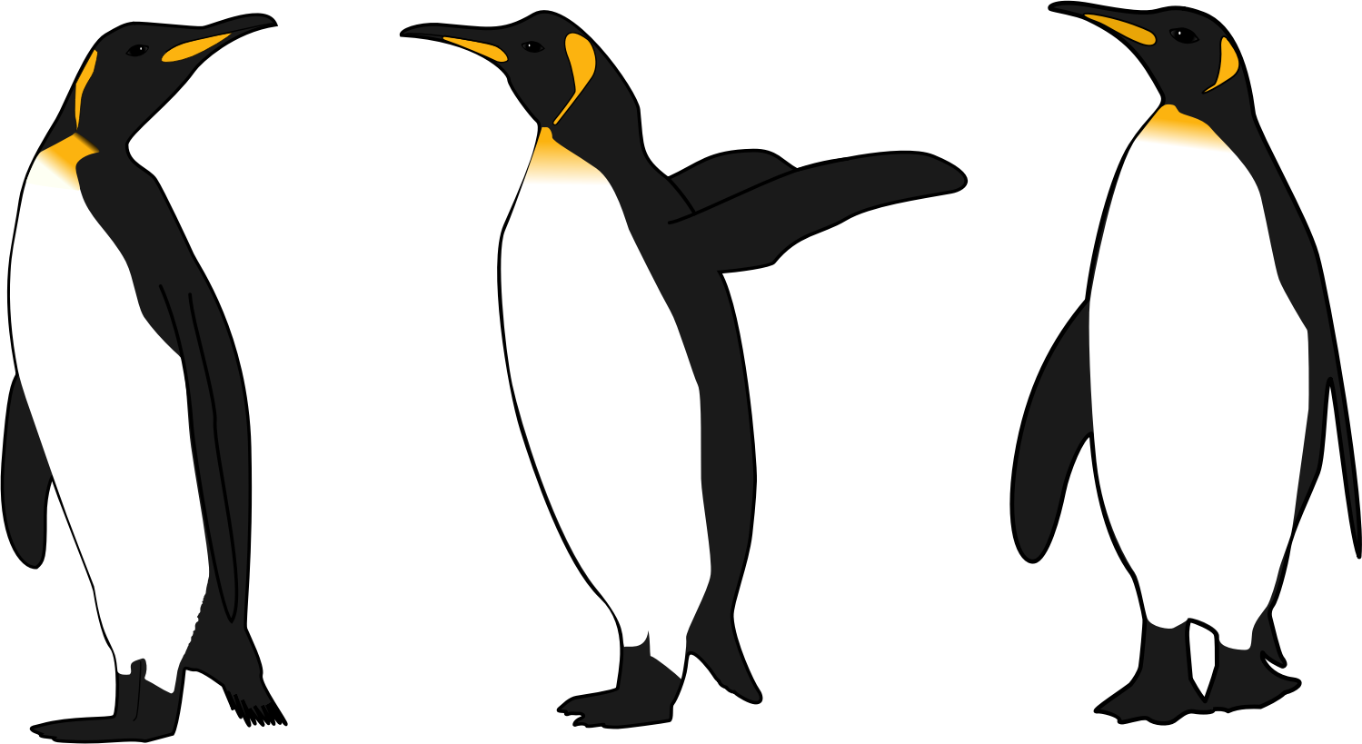 png freeuse download Pencil and in color. King penguin clipart