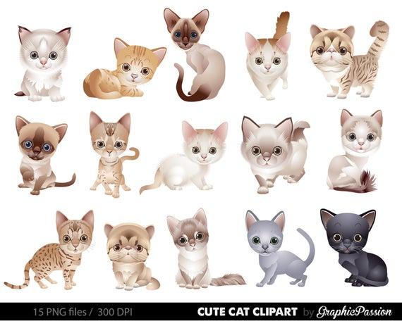 vector royalty free library Kittens clipart illustration. Cat clip art kitten.