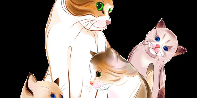 vector library stock Newborn Kittens Make Their Debut