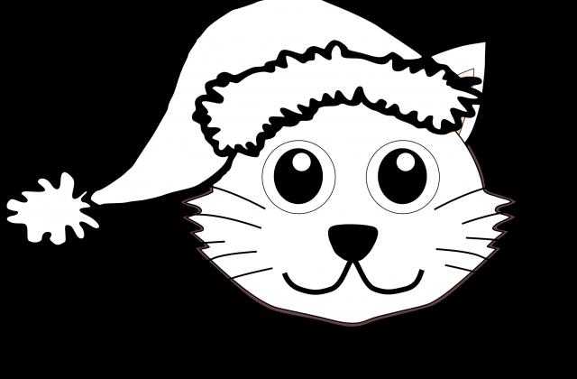 png freeuse Cat Face Drawing Cartoon at GetDrawings