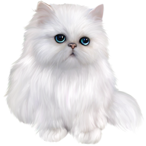 graphic freeuse library White Persian Cat Clipart
