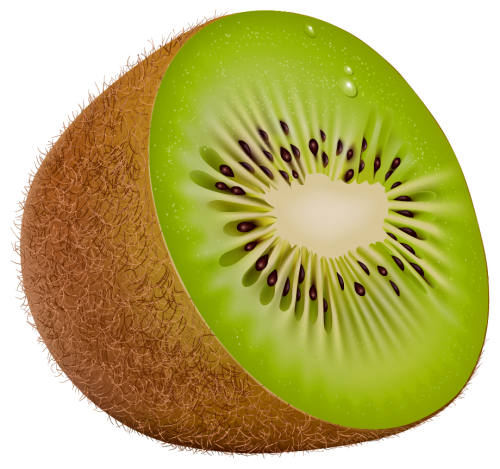 vector stock Png best web . Kiwi clipart