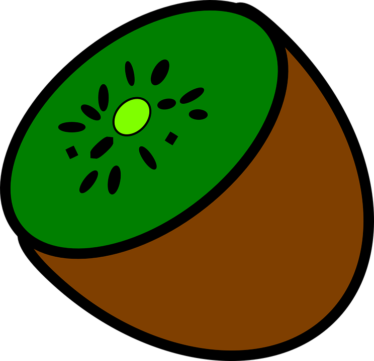 vector free library Kiwi clipart. Brown fruit free on