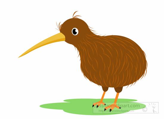 picture transparent Kiwi clipart cartoon. Animal bird classroom kiwibirdclipartjpg.