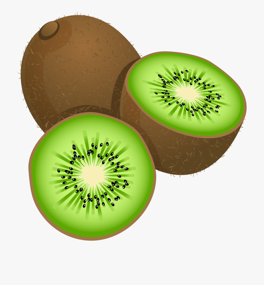 vector free download Fruits painted free . Kiwi clipart cartoon.