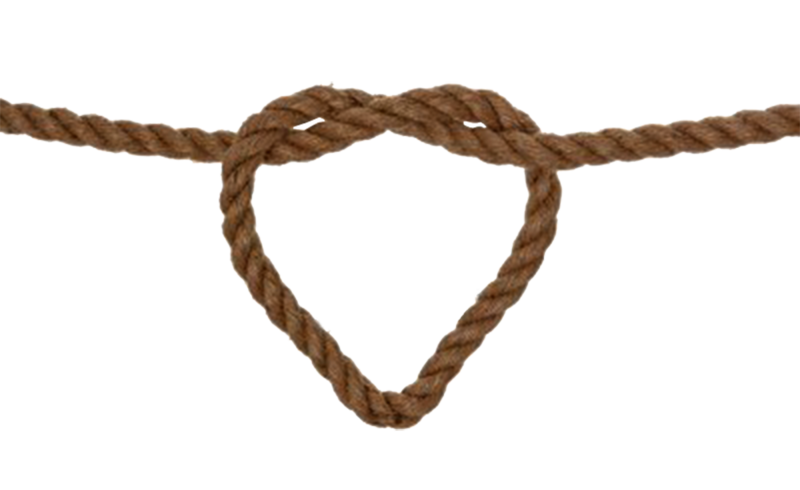 vector free library Wedding invitation rope clip. Knot clipart lasso