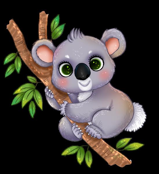 clip royalty free Koala clipart. Nice clip art classroom