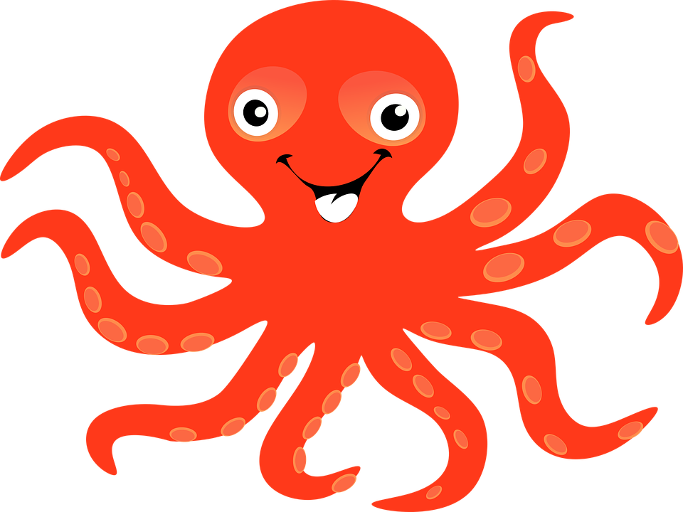 png Collection of free Cephalopode clipart sea animal