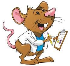 vector free download Pto stem theme free. Lab rat clipart