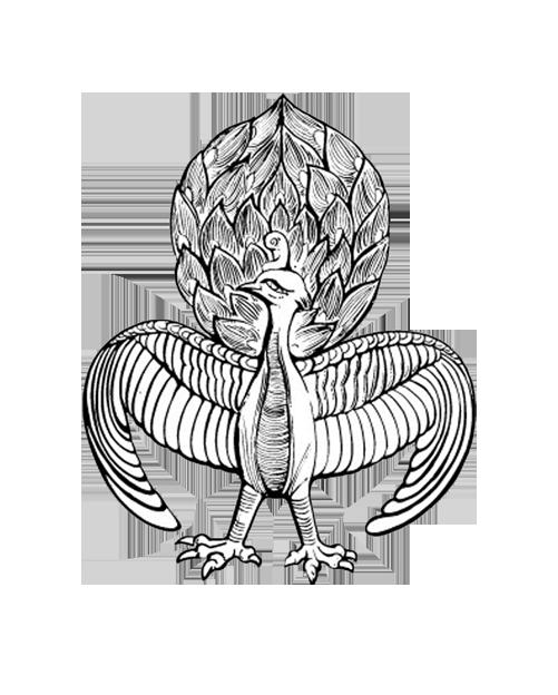 jpg free library Peafowl Drawing at GetDrawings
