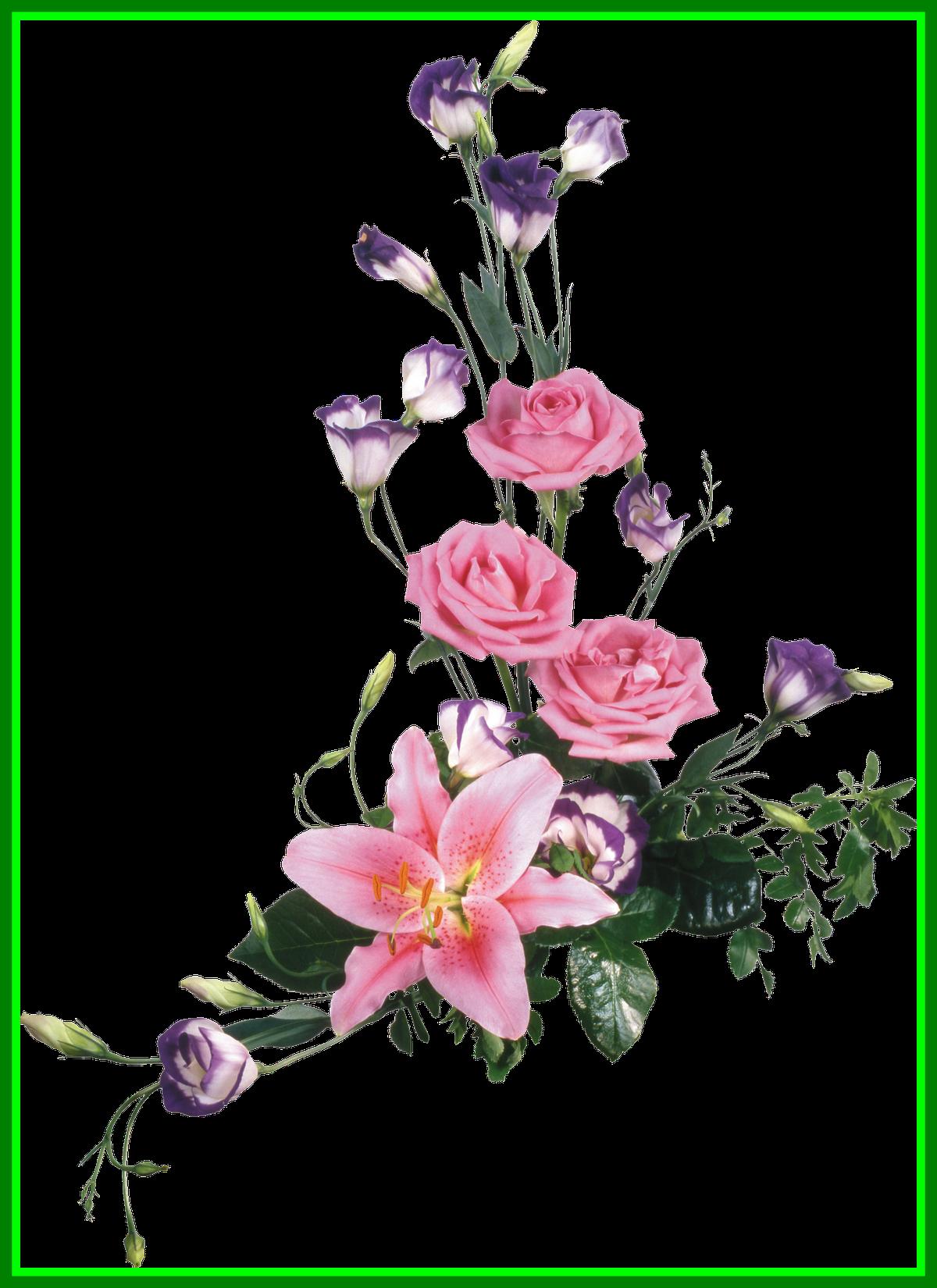 jpg transparent stock Fascinating flores para photoshop. Lace clipart png