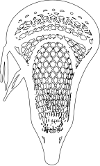 clip royalty free stock lacrosse vector head #98693971