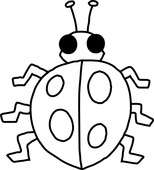 free download Clip art at clker. Ladybug black and white clipart.