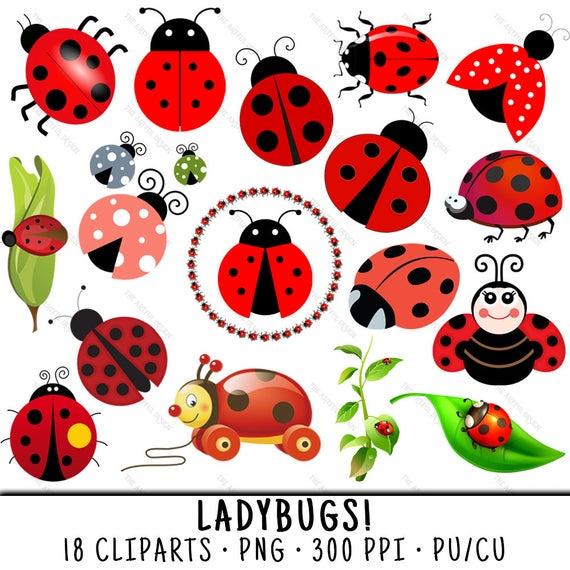 png transparent download Ladybug clipart. Spring clip art png.
