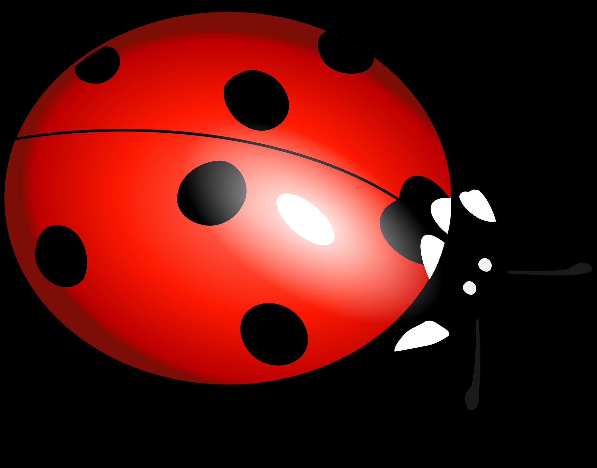 vector free Ladybug clipart. File transparentpng