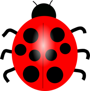 transparent Red clip art at. Ladybug clipart.
