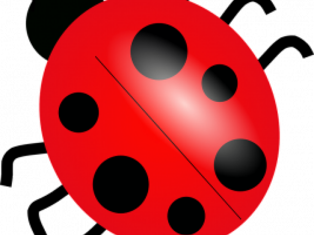 picture stock Ladybug free on dumielauxepices. Ladybugs clipart symmetrical.