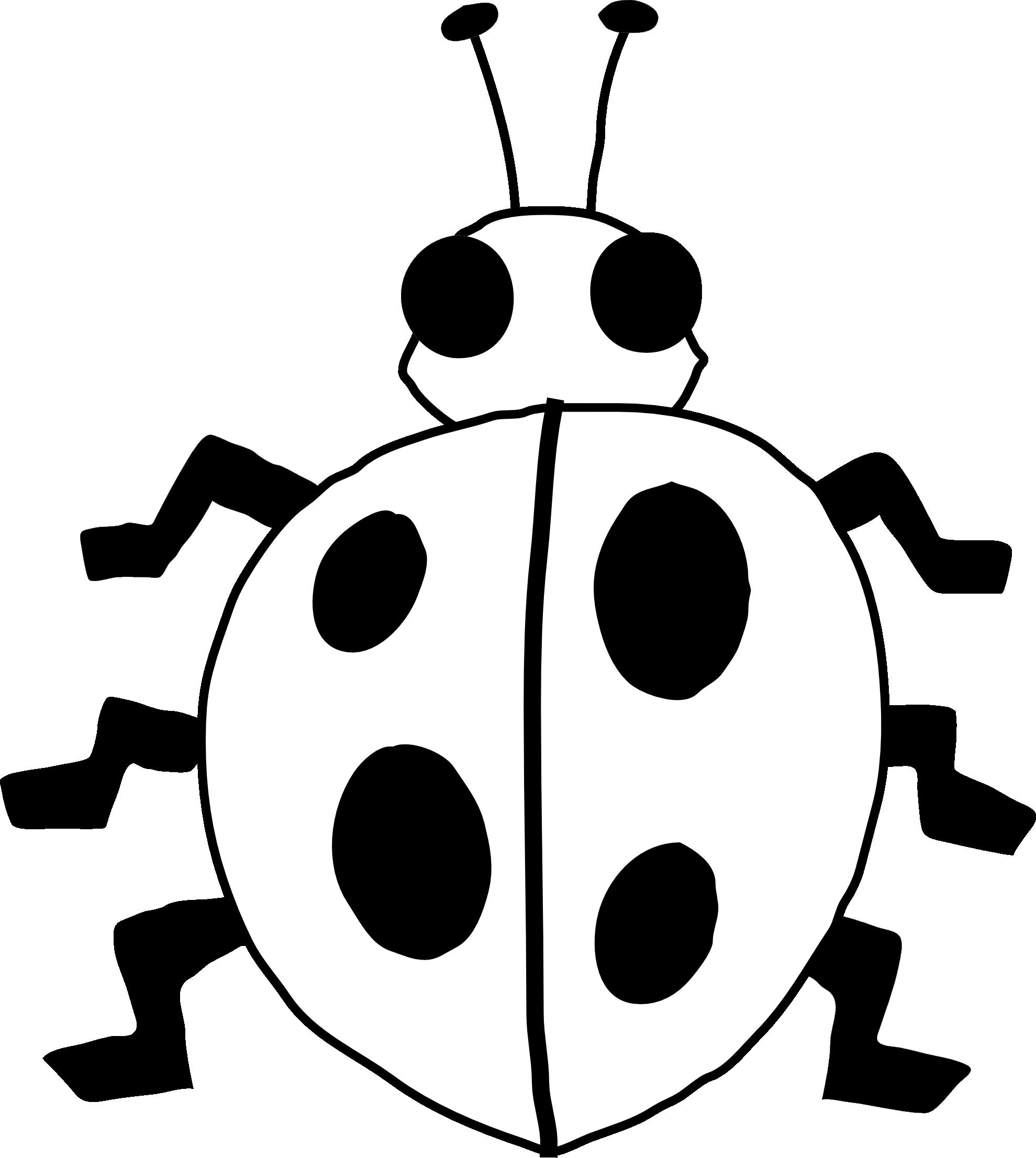 image freeuse download Ladybugs clipart symmetrical. Ladybug borders free on.