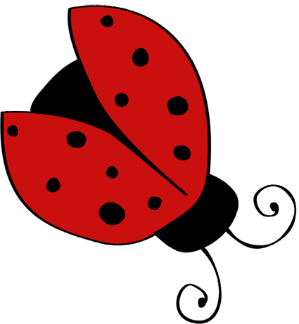 picture stock single ladybug with open wings