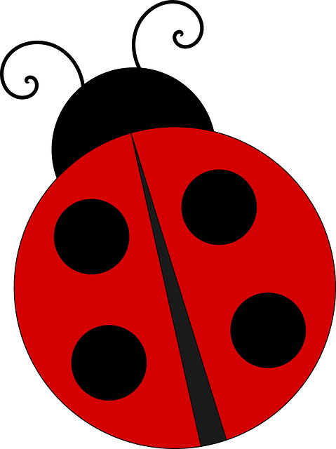 banner royalty free library Ladybugs clipart let's celebrate. Free image on pixabay.