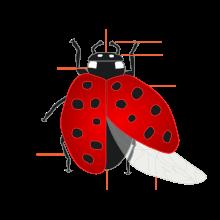 svg free stock ladybug transparent appearance #114073923