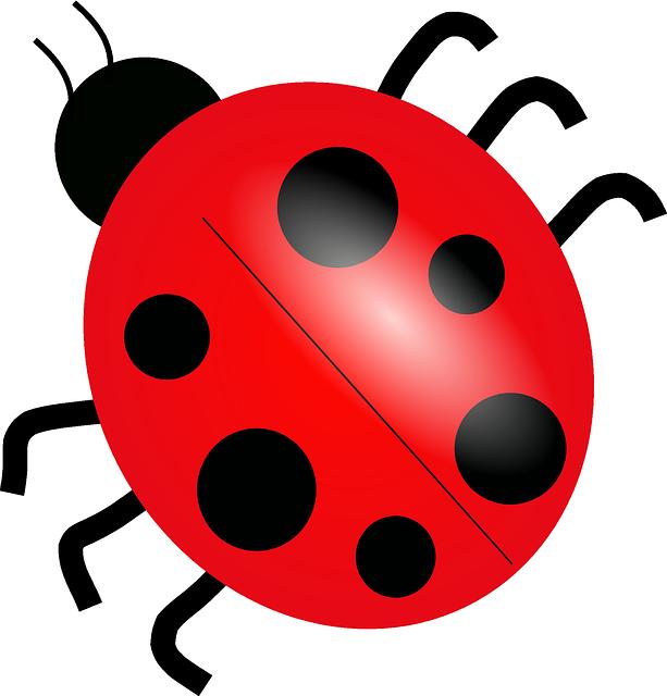 clipart stock ladybug transparent gambar #114073748