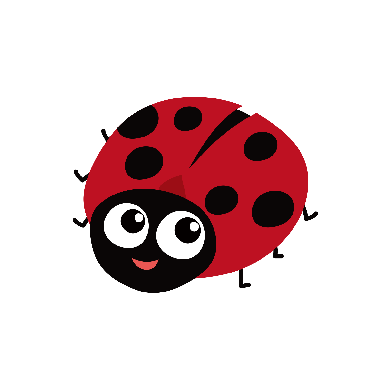 image transparent stock Insect Ladybird