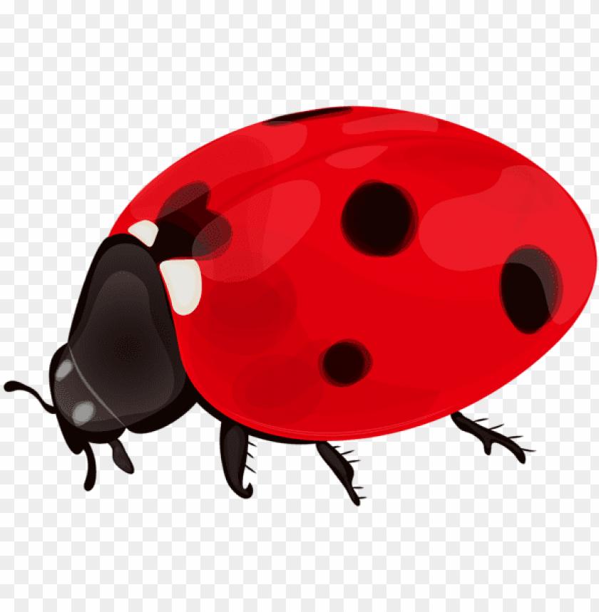 jpg freeuse download Png clip art image. Ladybug transparent metallic