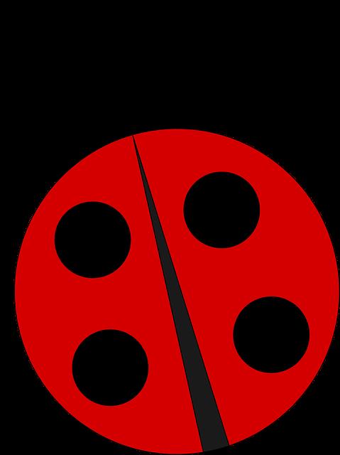 banner royalty free stock ladybug