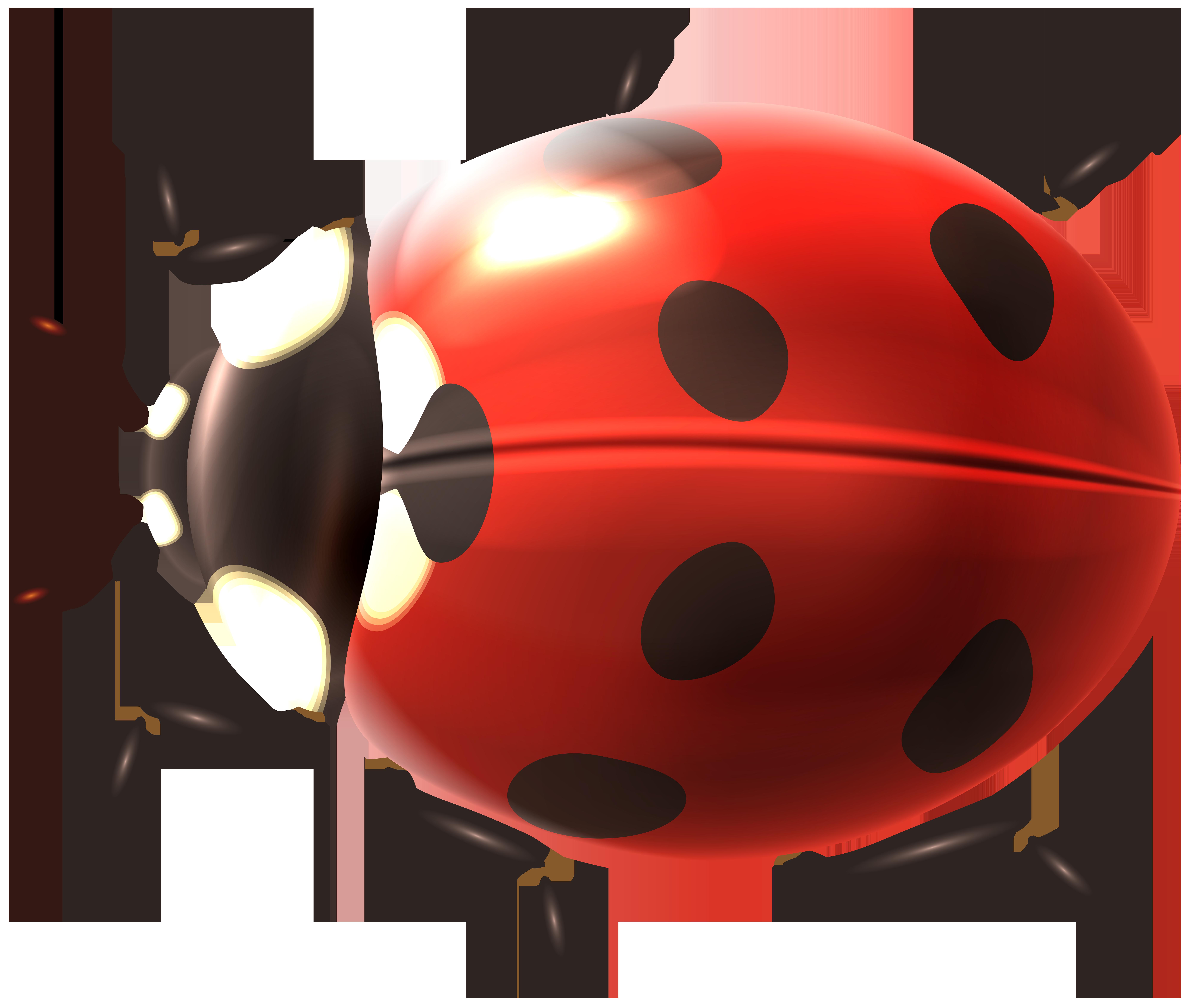 svg royalty free download Png clip art image. Ladybug transparent