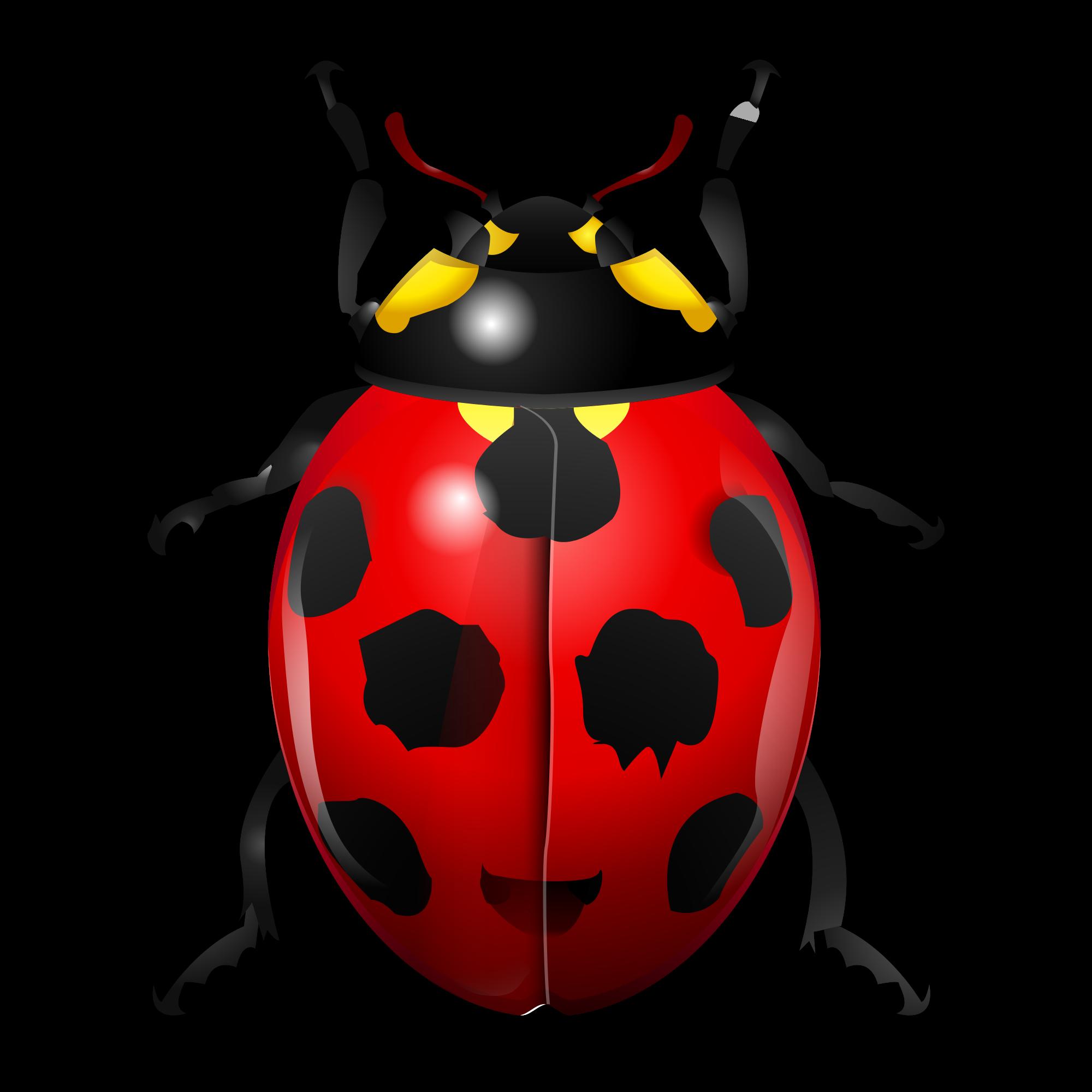clip art transparent Ladybugs clipart symmetrical. Ladybug transparent .