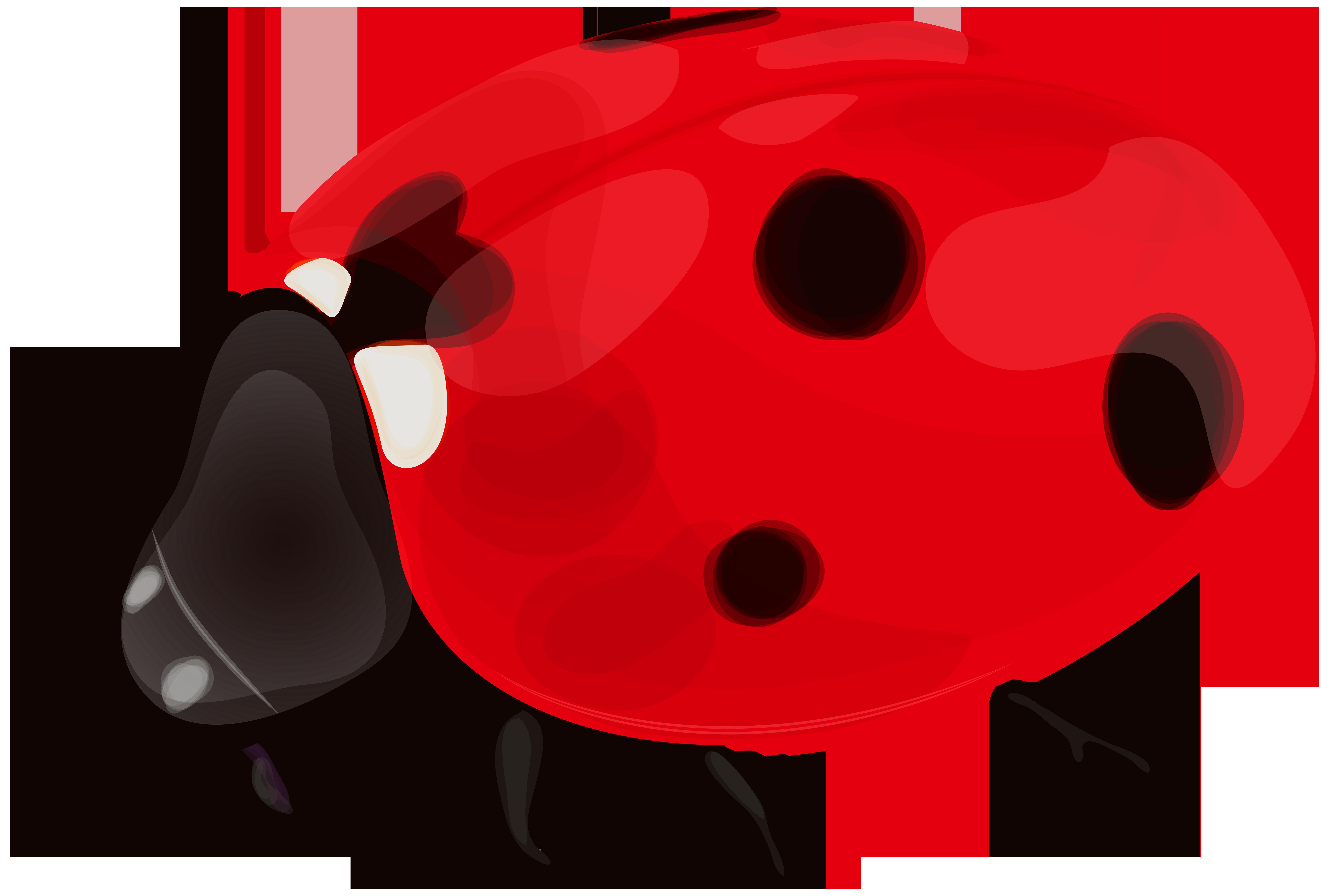 clip freeuse Ladybug PNG Clip Art