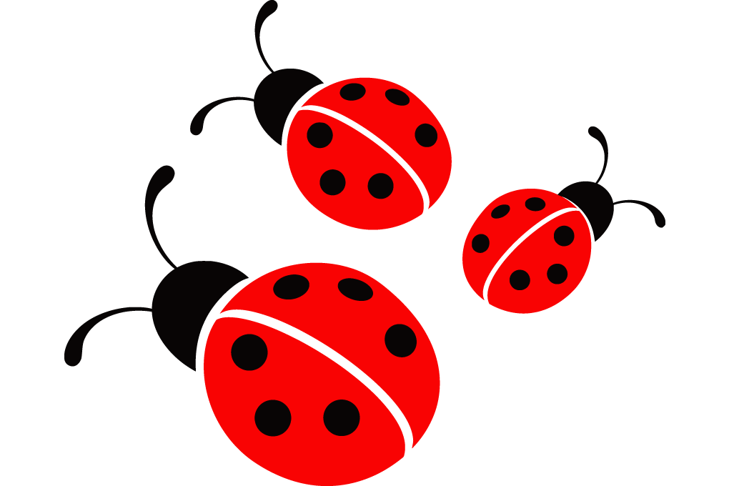 image black and white stock Free download best on. Ladybugs clipart vector.
