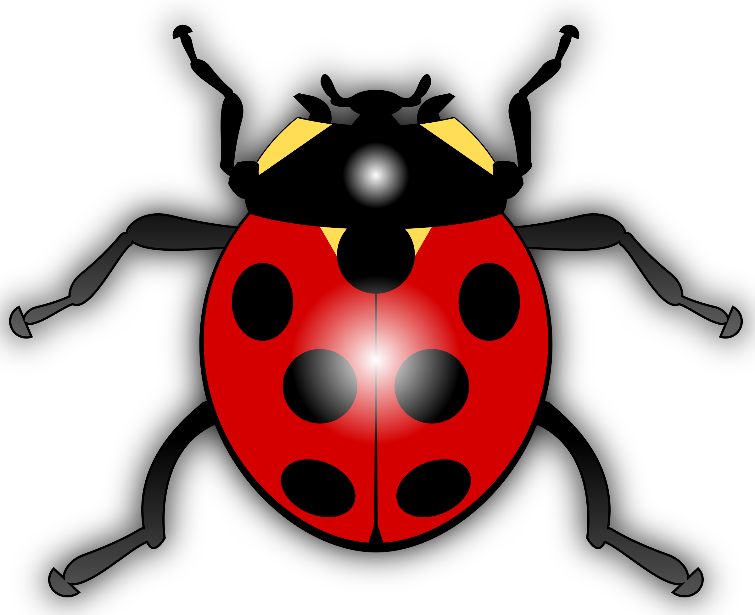 clip black and white stock Ladybug. Ladybugs clipart vector.