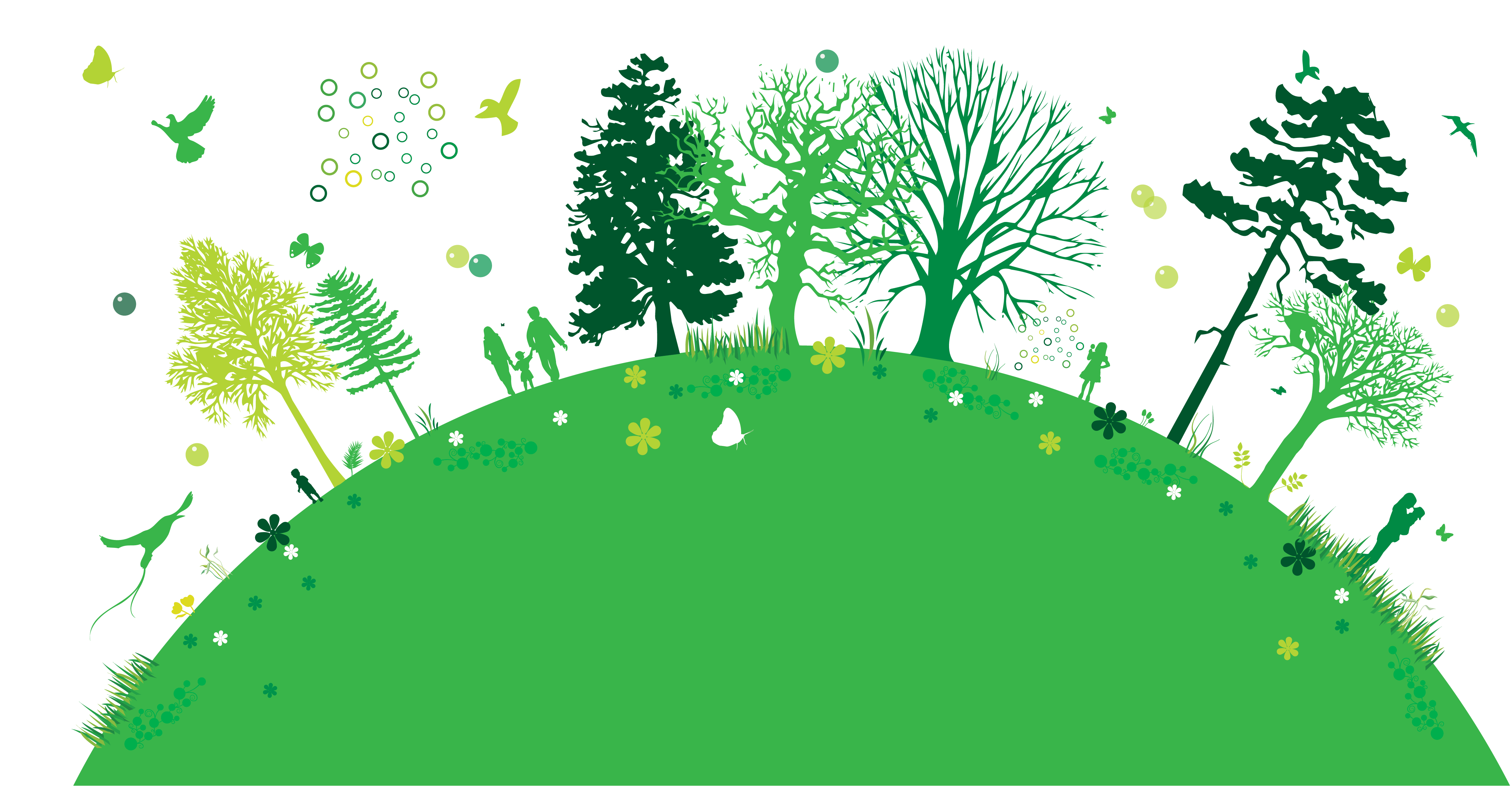 banner free library Watershed ecology maricruz ecological. Lake clipart ecosystem.