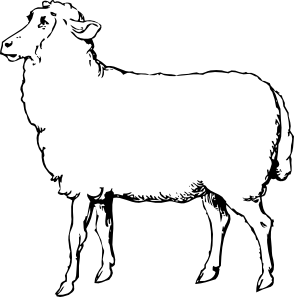 free stock Lamb clipart. Black and white panda