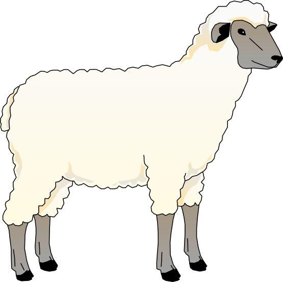 vector freeuse Lamb clipart barnyard animal. Pencil and in color