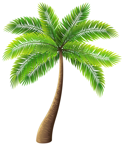 jpg library download Tree png clip art. Vector bushes palm