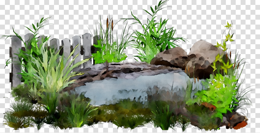 jpg black and white library Landscaping clipart pond grass. Cartoon botany rock transparent.