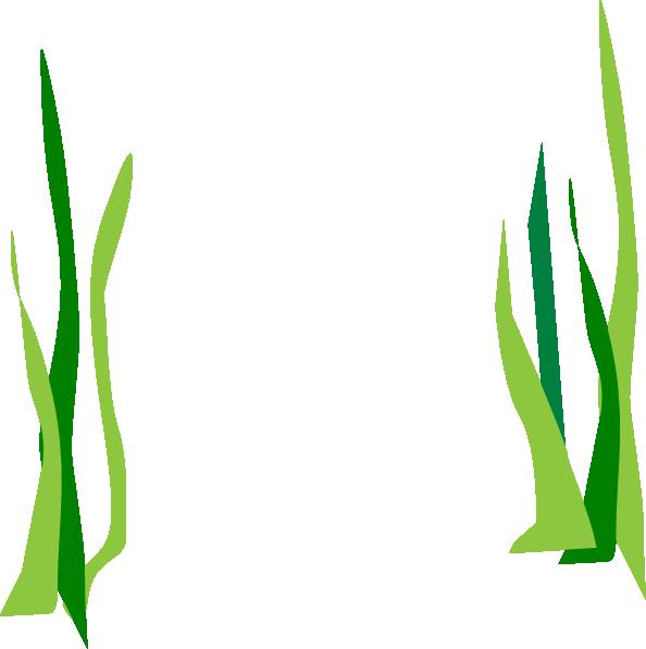 picture transparent download Pond Clipart grass