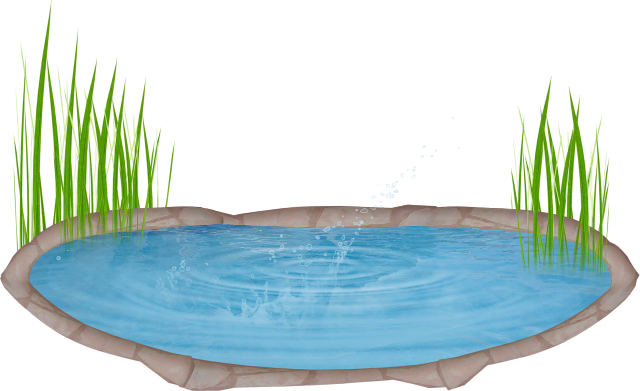 png freeuse library . Landscaping clipart pond grass.