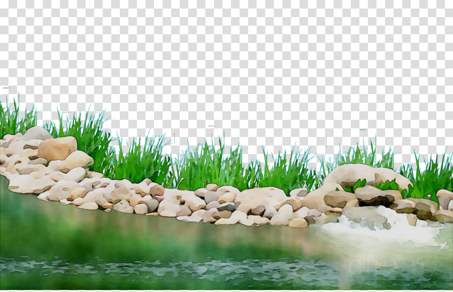 picture free download Cartoon nature water transparent. Landscaping clipart pond grass.